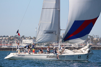 Harbor cup-1604
