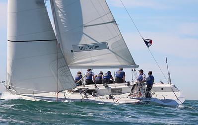 Harbor cup-2402