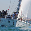 Harbor cup-1165