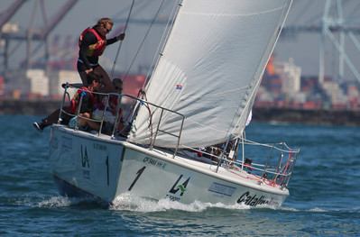 Harbor cup-1148