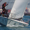 Harbor cup-1148