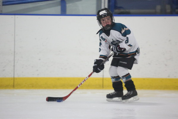 Mite B - Mt. Brydges Cougars