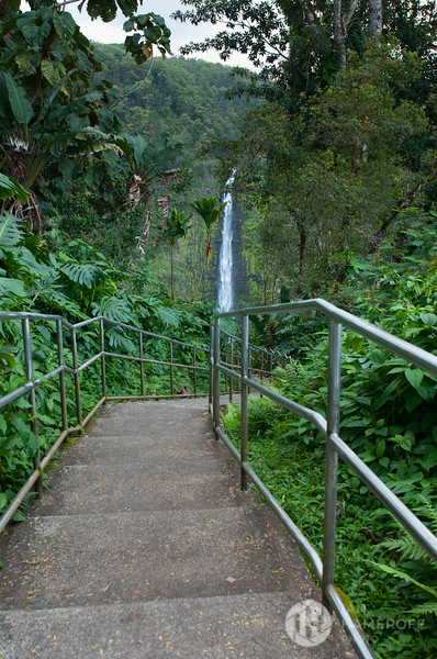 A Stairway to the Falls