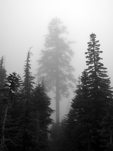 Lucifer Sky Lakes Wilderness Oregon