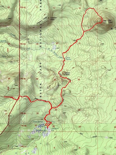 Sphagnum Bog Crater Lake National Park Oregon