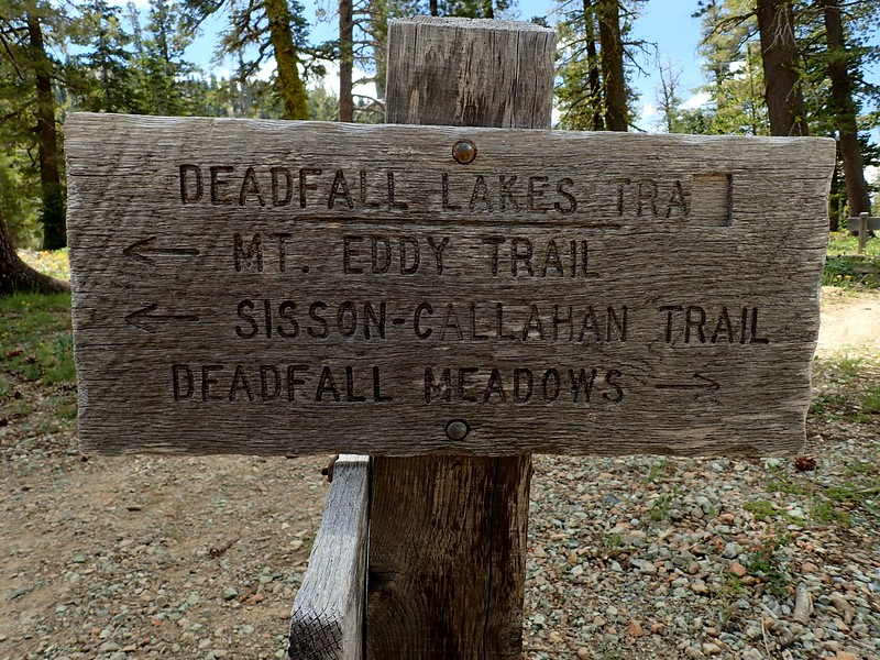 Mount Eddy Deadfall Lakes Shasta-Trinity National Forest California
