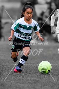 Calderon #5