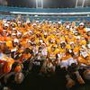 JACKSONVILLE, FL - TaxSlayer Bowl Game -  Tennessee vs Iowa