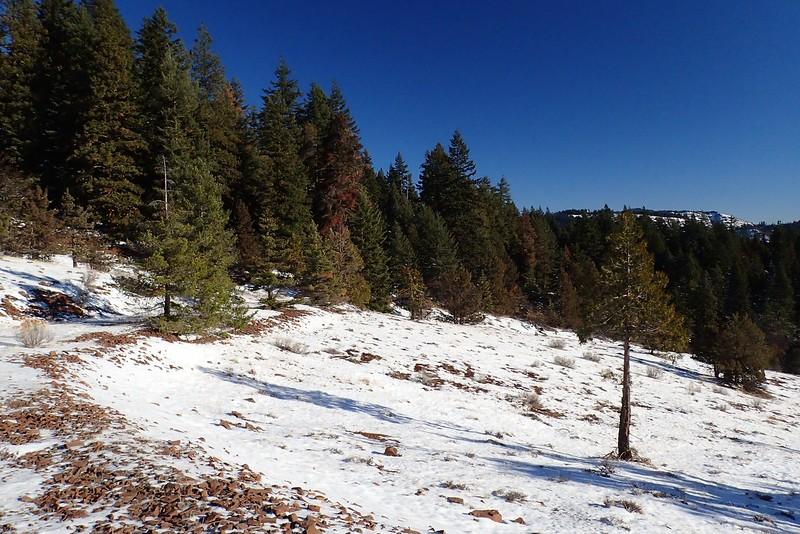 Slide Ridge Soda Mountain Wilderness Oregon