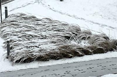 2015 12 01: Snow, Duluth Landscapes