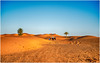 Into the Sand Dunes of the Moroccan Desert by Camel Caravan