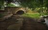Bridge in the Meadow