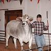 2015-16 livestock show 050