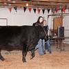 2015-16 livestock show 054