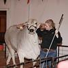 2015-16 livestock show 049