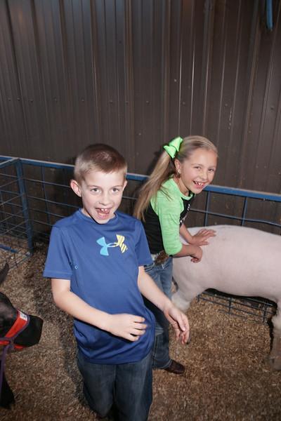 2015-16 livestock show 037