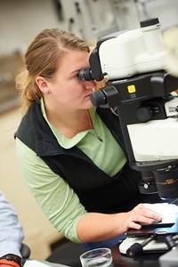 -UWL UW-L UW-La Crosse University of Wisconsin-La Crosse; Books; Collaborating; Cowley; day; Daytime; Desk; Fall; Inside; Lab; Microscope; November