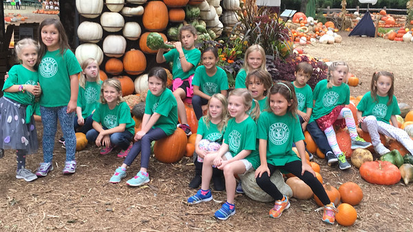 Lower School Field Trips & Activities