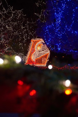 2015_Rotary_Lights_UWL_Eagle_011