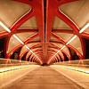 2nd - Wayne B  Neal - FCC - Peace Bridge - Calgary