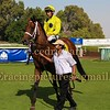 Horse Racing 22 Jan 2016,Jebel Ali, Dubai, United Arab Emirates