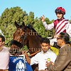 Horse Racing, Jebel Ali, Dubai, United Arab Emirates - 27th November 2015