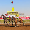 Horse Racing 5 Feb 2016,Jebel Ali, Dubai, United Arab Emirates