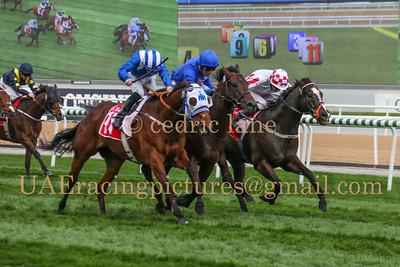 2015 - 2016 Horse Racing Season