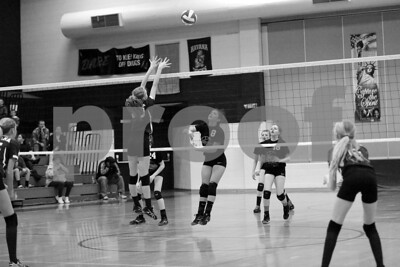 JrHighVolleyballVsBeardstown-2-4-2016_8725