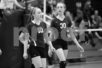 JrHighVolleyballVsBeardstown-2-4-2016_8698