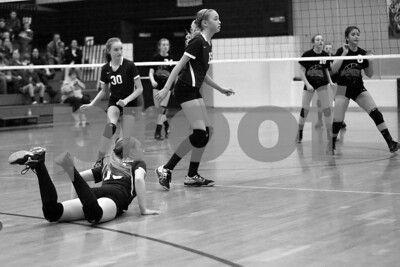 JrHighVolleyballVsBeardstown-2-4-2016_8727