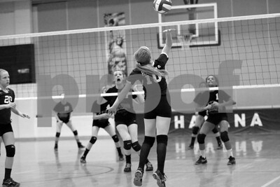 JrHighVolleyballVsBeardstown-2-4-2016_8716