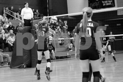 JrHighVolleyballVsBeardstown-2-4-2016_8724