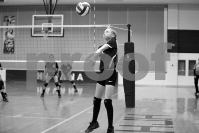 JrHighVolleyballVsBeardstown-2-4-2016_8733
