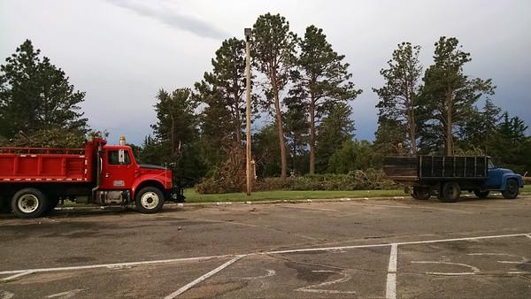 Storm Damage & Cleanup 2016