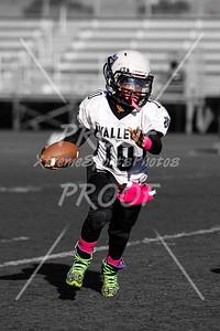 Williams #10
