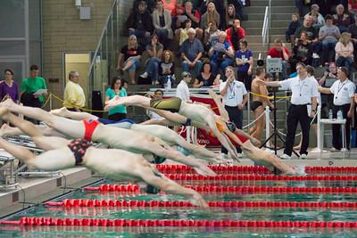 2015 3A & 4A  Swim & Dive District Meet