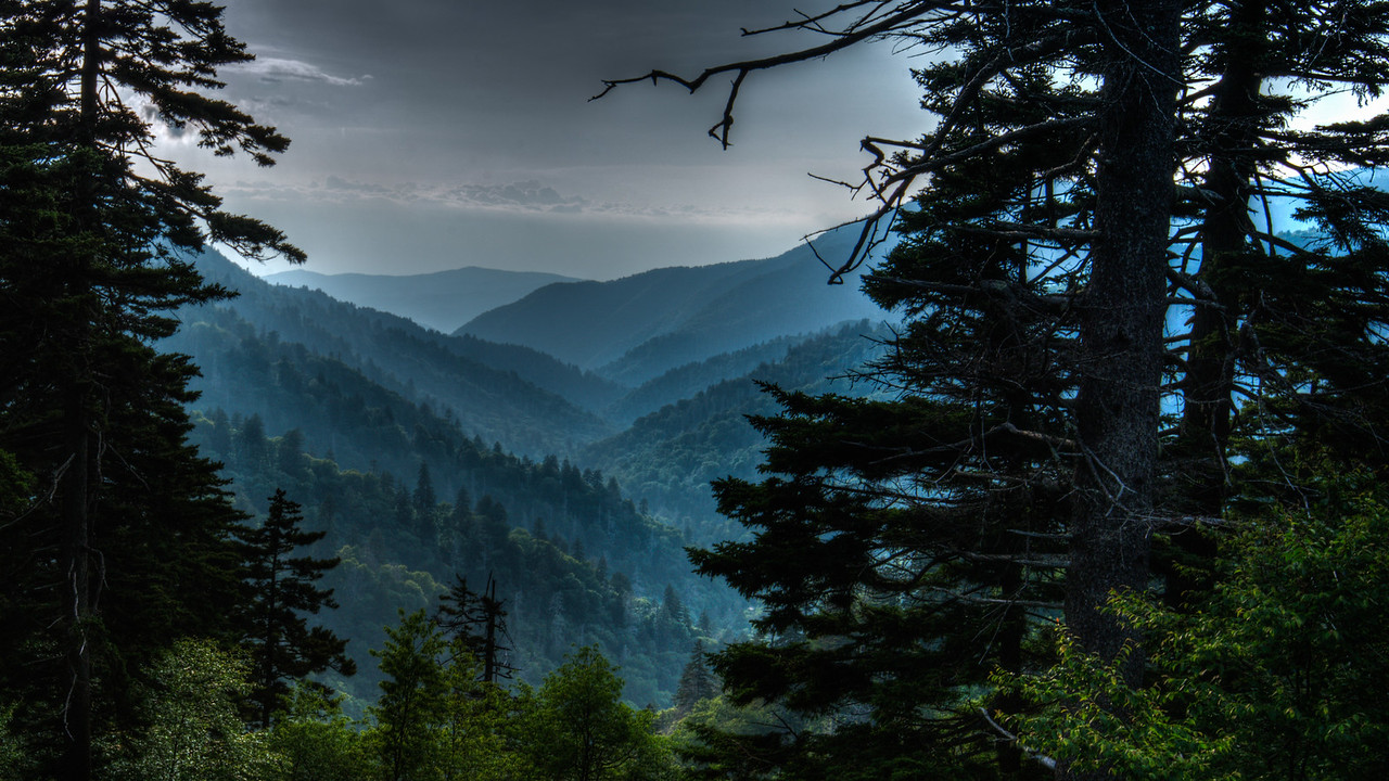Smoky Mountains National Park at Newfound Gap