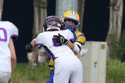 2015; AFBÖ; American Football; Graz Giants; Vienna Vikings; Youth; U15