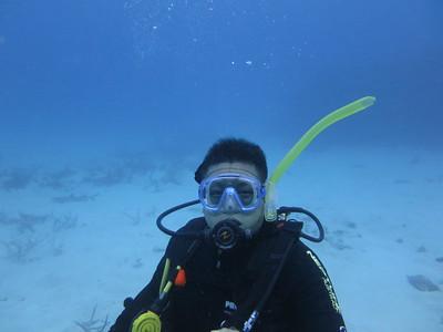 #sharkfie