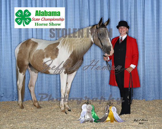 2015 Alabama 4-H State Championship Horse Show