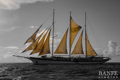 Grenada-7833