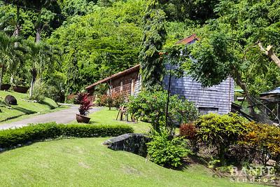 Grenada-0599