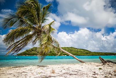 Grenada-7599