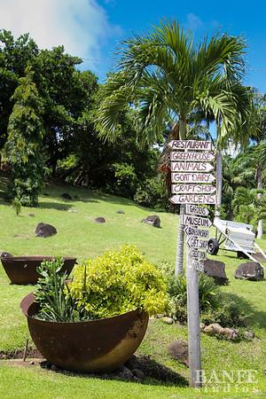 Grenada-0568
