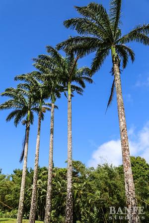 Grenada-0229