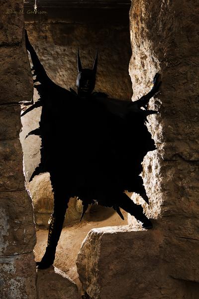Batgirl emerges