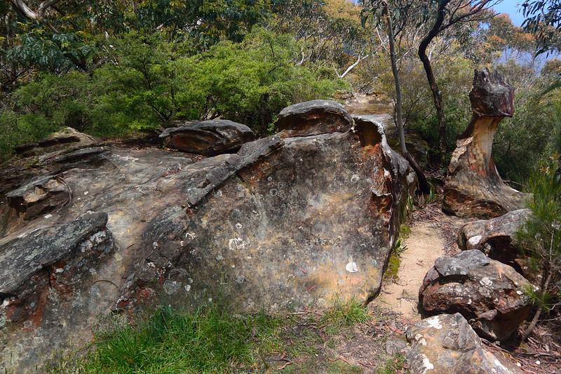 fossil rock
