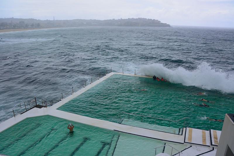 bondi swim club_01