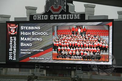 2015 BI - Stebbins